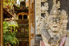 Bali Sightseeing-10