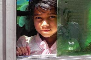 Mädchen im Bus   Nepal